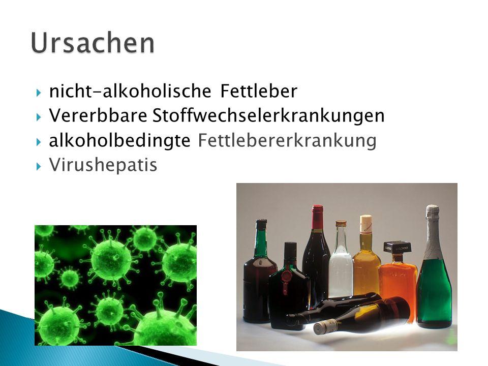 Ursachen nicht-alkoholische Fettleber