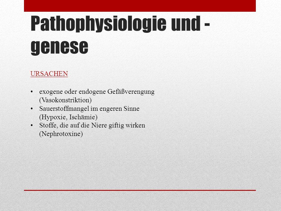 Pathophysiologie und -genese