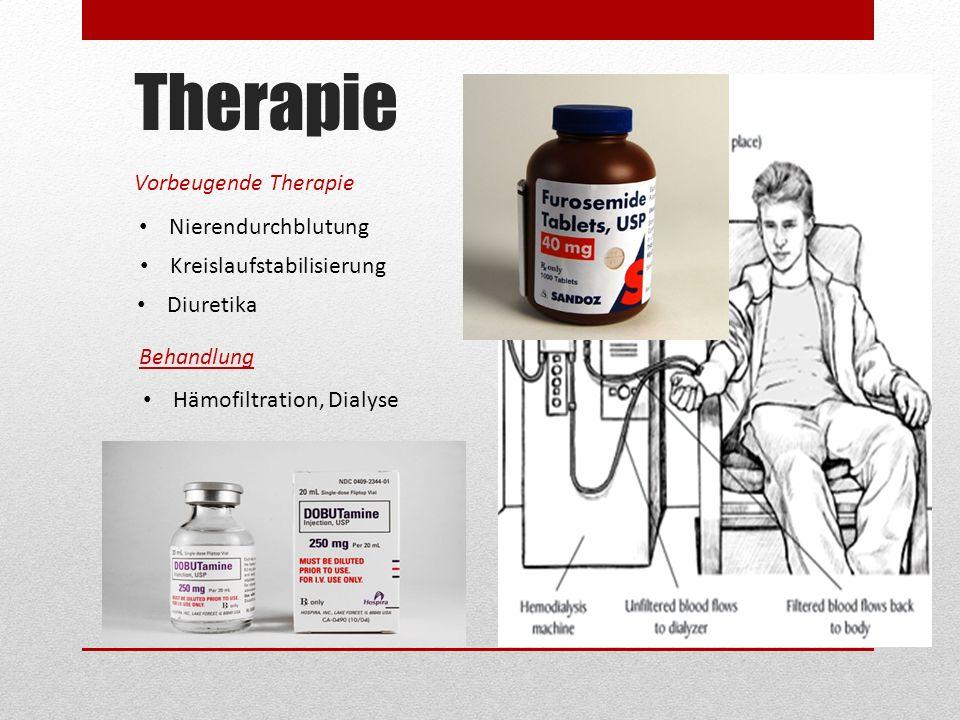 Therapie Vorbeugende Therapie Nierendurchblutung