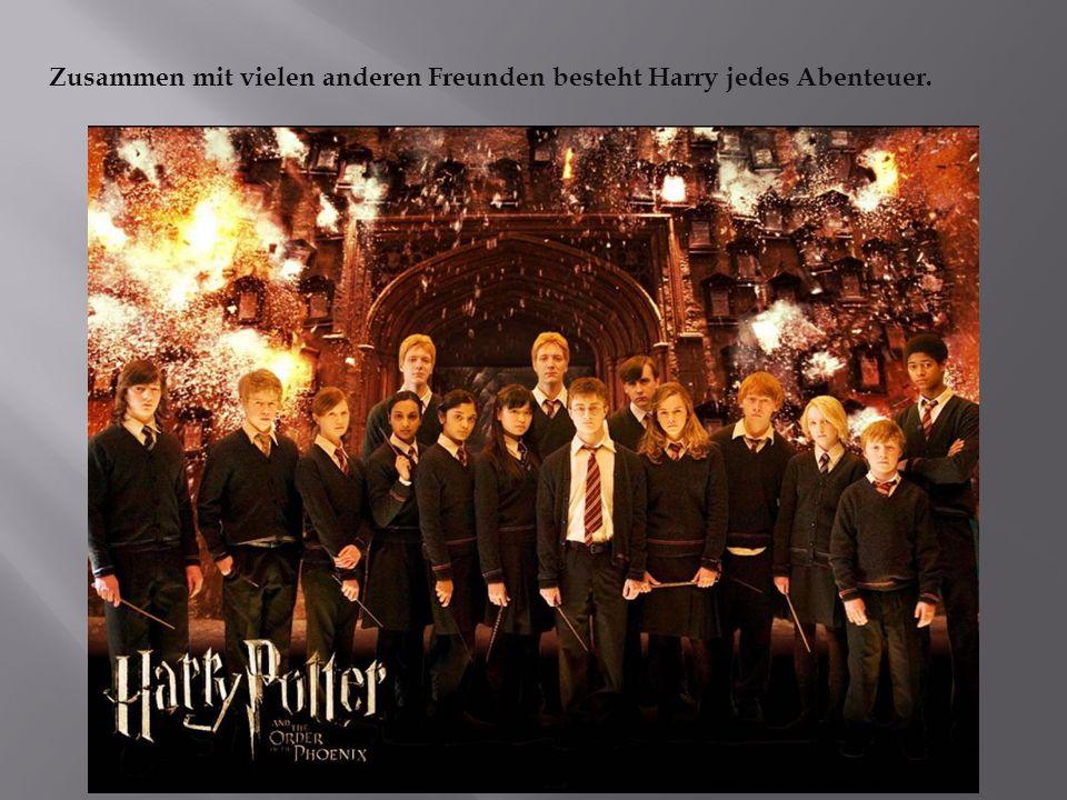 Zusammen mit vielen anderen Freunden besteht Harry jedes Abenteuer.