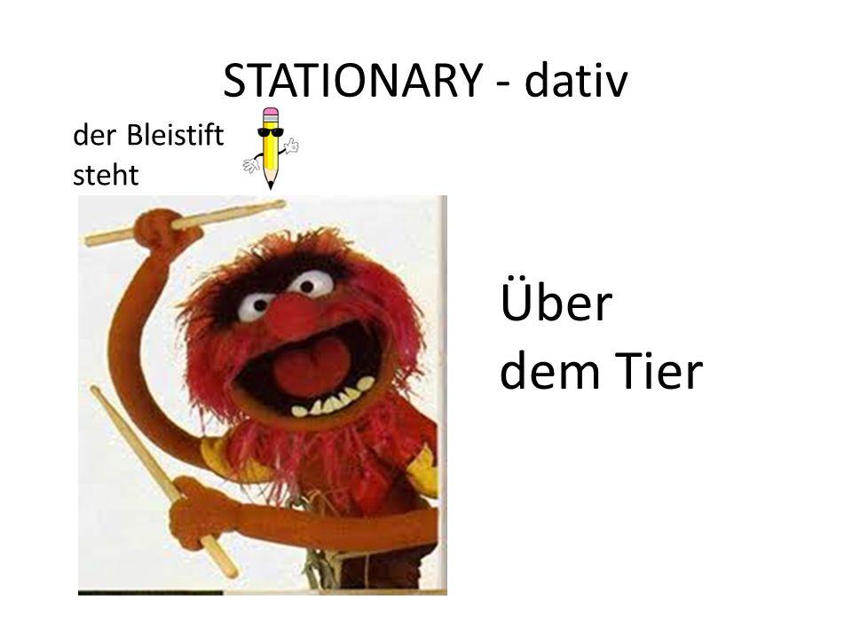 STATIONARY - dativ der Bleistift steht Über dem Tier