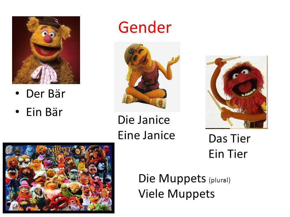 Gender Der Bär Ein Bär Die Janice Eine Janice Das Tier Ein Tier