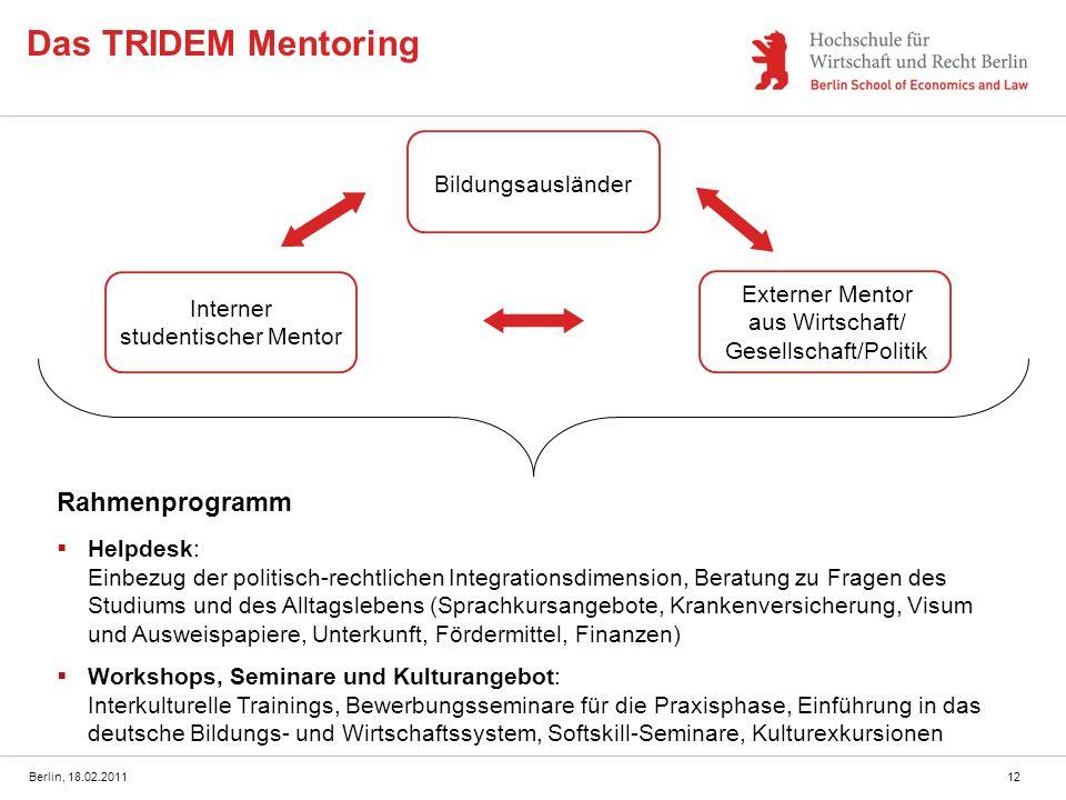 Das TRIDEM Mentoring Rahmenprogramm Bildungsausländer
