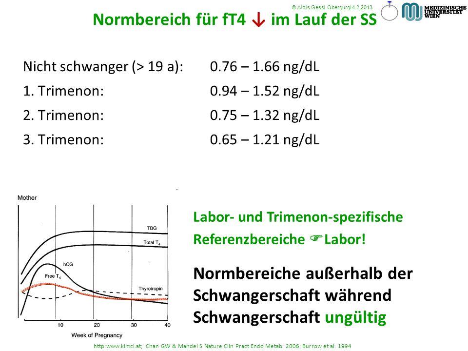 Normbereich für fT4 ↓ im Lauf der SS komischer Laborbefund- was tun