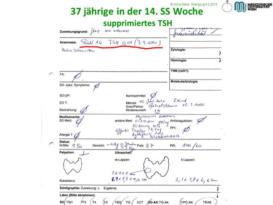37 jährige in der 14. SS Woche supprimiertes TSH