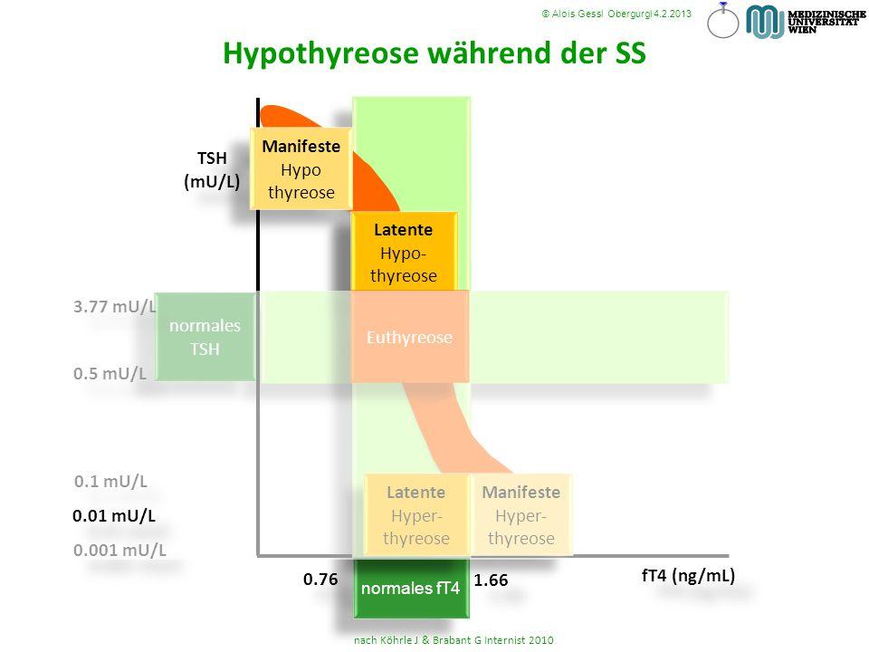 Hypothyreose während der SS