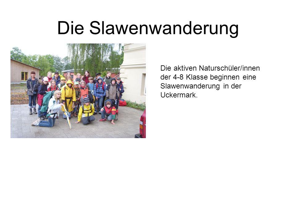 Die Slawenwanderung Die aktiven Naturschüler/innen