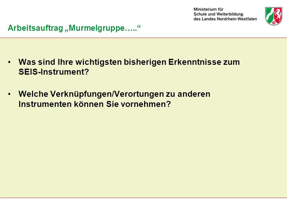 """Arbeitsauftrag """"Murmelgruppe….."""