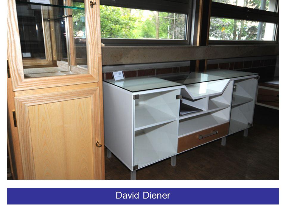 David Diener