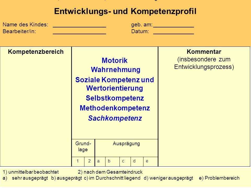 Entwicklungs- und Kompetenzprofil