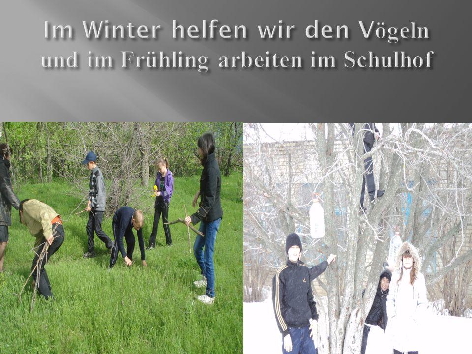 Im Winter helfen wir den Vögeln und im Frühling arbeiten im Schulhof