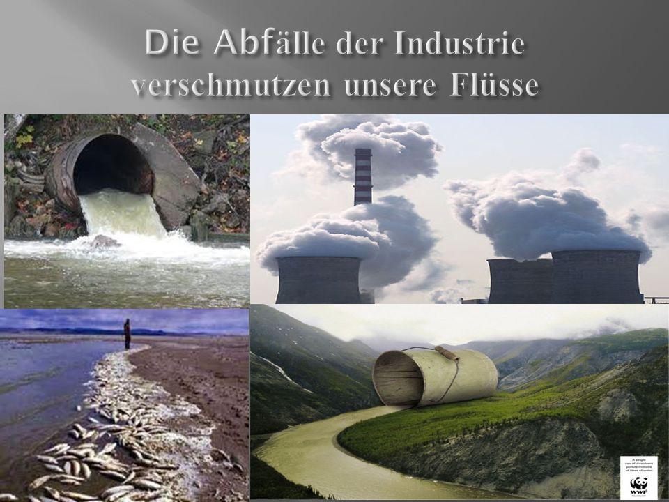 Die Abfälle der Industrie verschmutzen unsere Flüsse