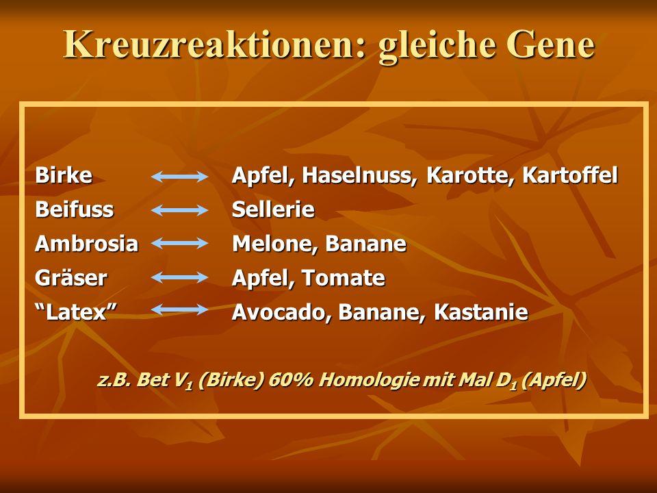 Kreuzreaktionen: gleiche Gene