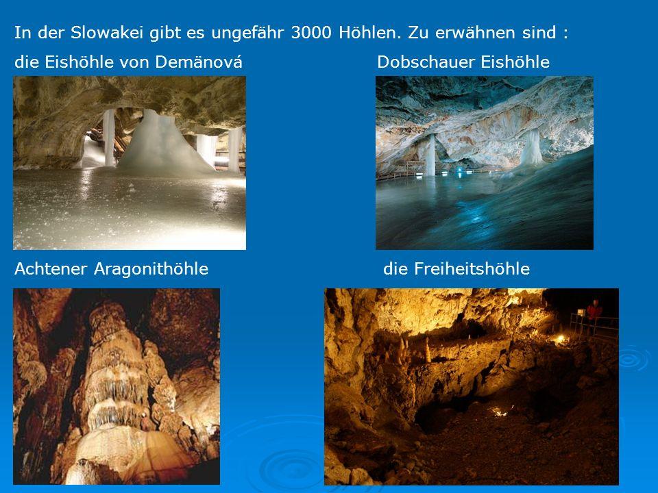 In der Slowakei gibt es ungefähr 3000 Höhlen. Zu erwähnen sind :