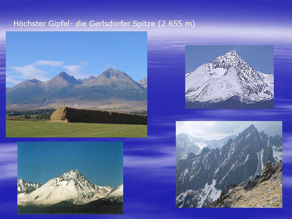 Höchster Gipfel- die Gerlsdorfer Spitze (2 655 m)