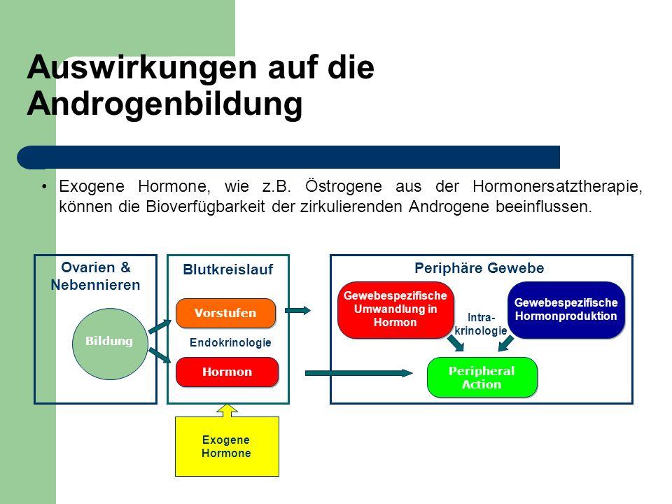 Auswirkungen auf die Androgenbildung