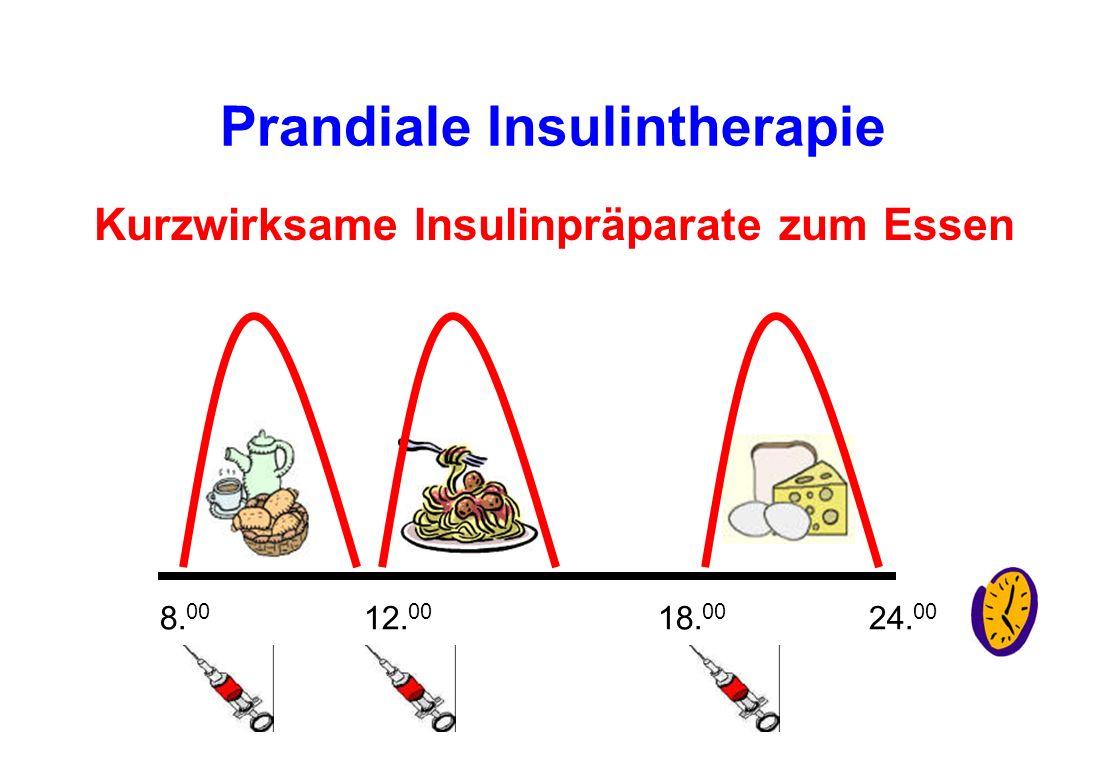 Prandiale Insulintherapie Kurzwirksame Insulinpräparate zum Essen