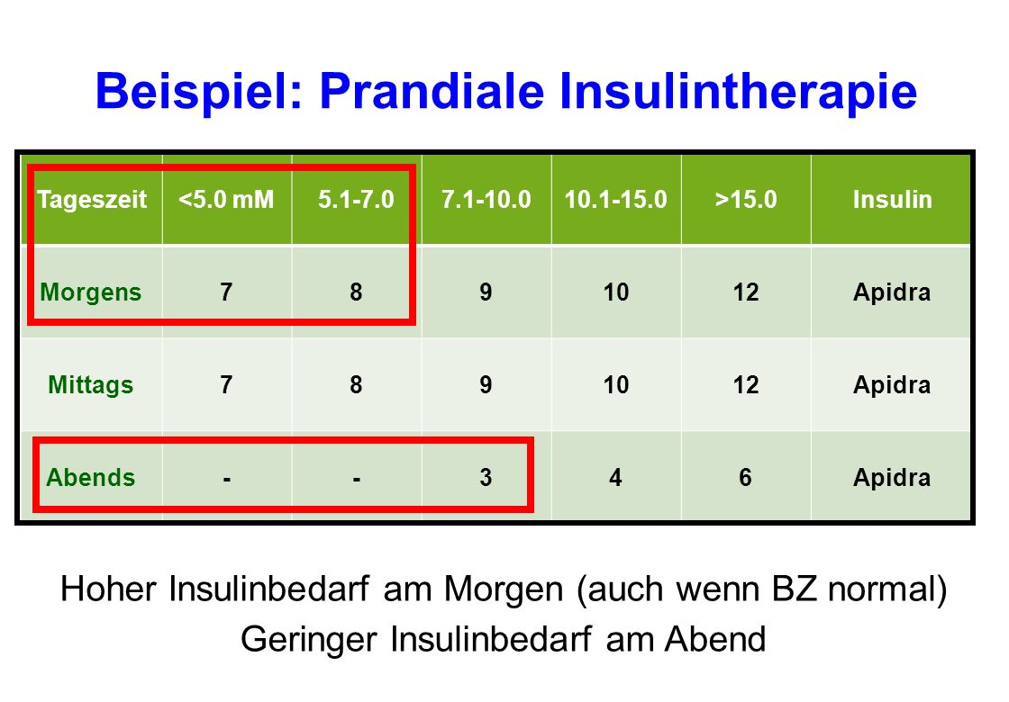 Beispiel: Prandiale Insulintherapie