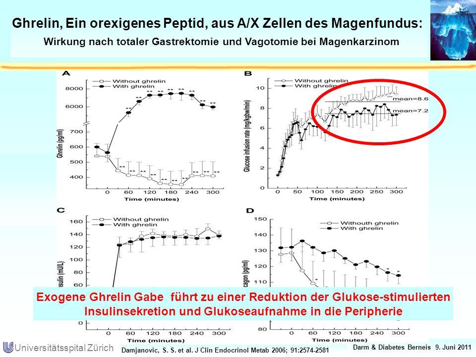 Ghrelin, Ein orexigenes Peptid, aus A/X Zellen des Magenfundus: