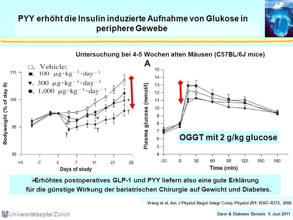 PYY erhöht die Insulin induzierte Aufnahme von Glukose in periphere Gewebe