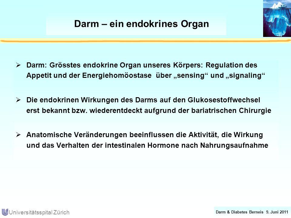 Darm – ein endokrines Organ