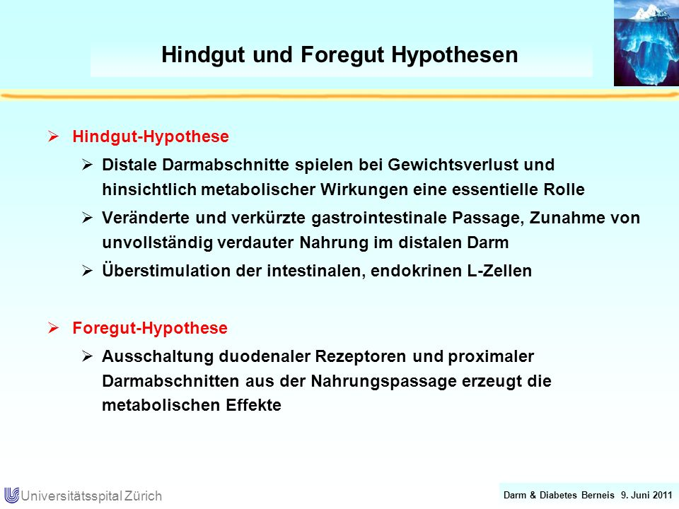 Hindgut und Foregut Hypothesen