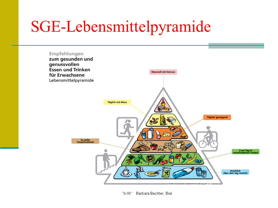 SGE-Lebensmittelpyramide