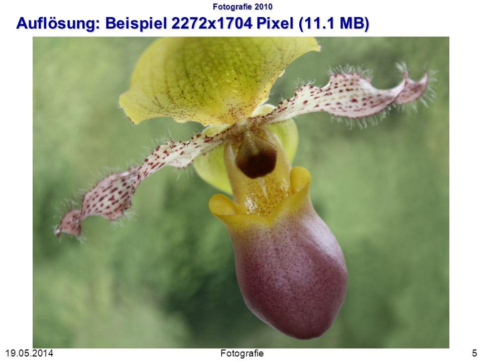 Fotografie 2010 Auflösung: Beispiel 2272x1704 Pixel (11.1 MB)