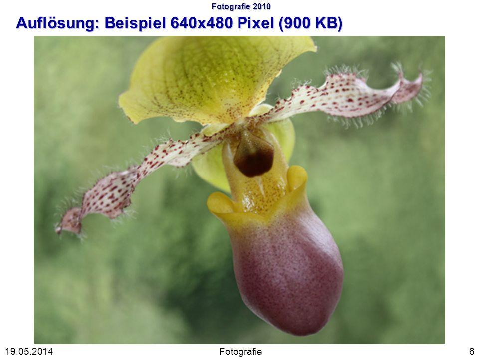 Fotografie 2010 Auflösung: Beispiel 640x480 Pixel (900 KB)