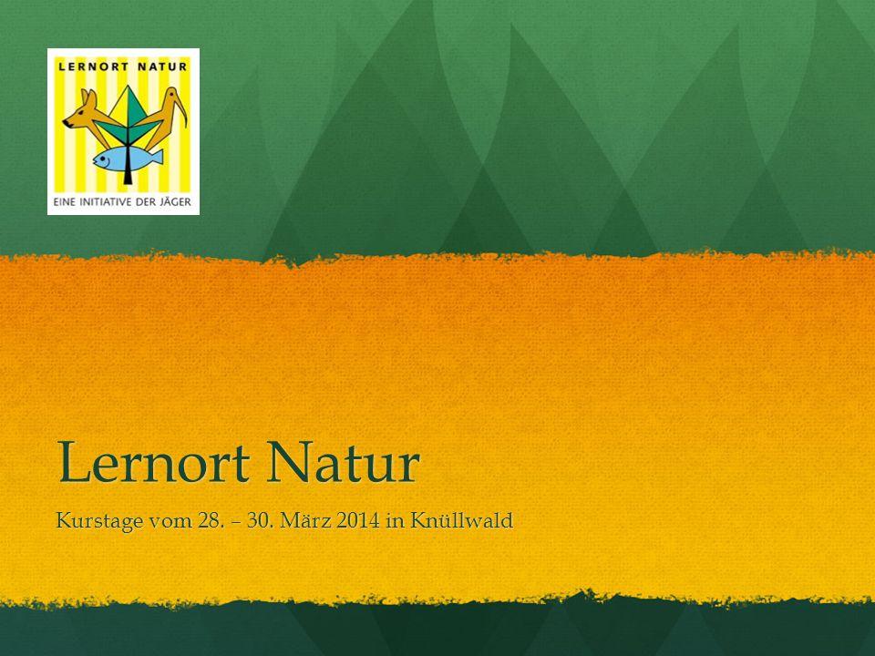 Kurstage vom 28. – 30. März 2014 in Knüllwald
