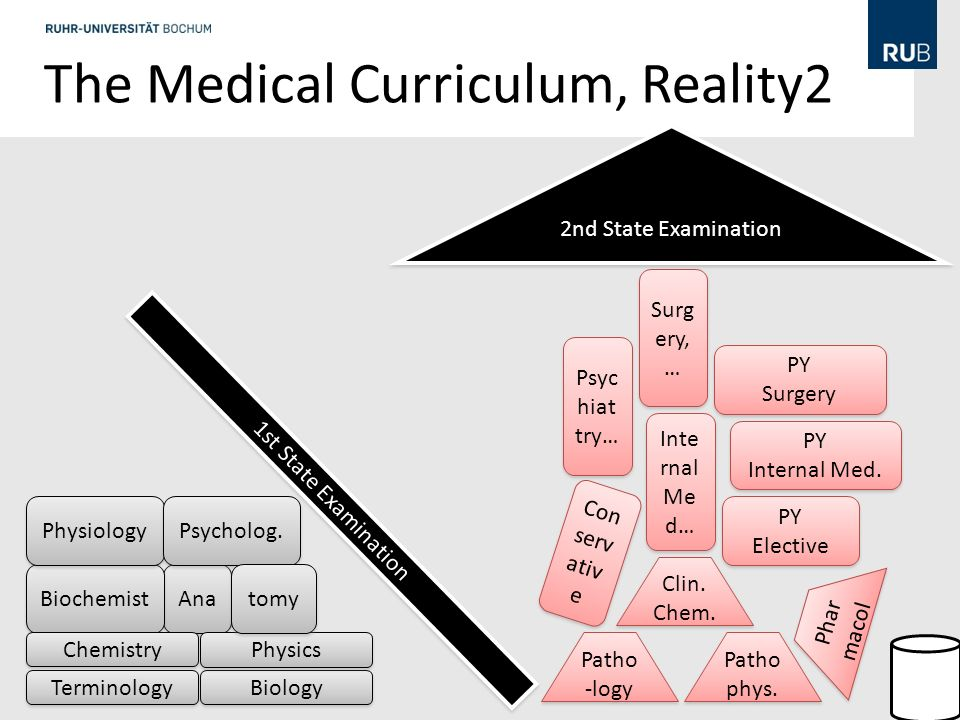 The Medical Curriculum, Reality2