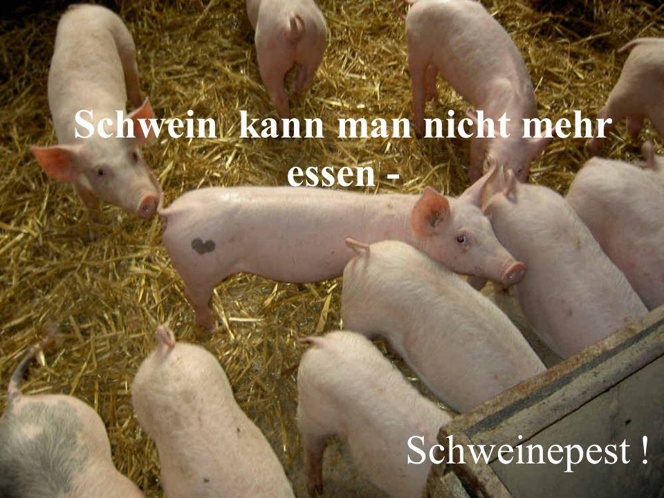Schwein kann man nicht mehr essen -