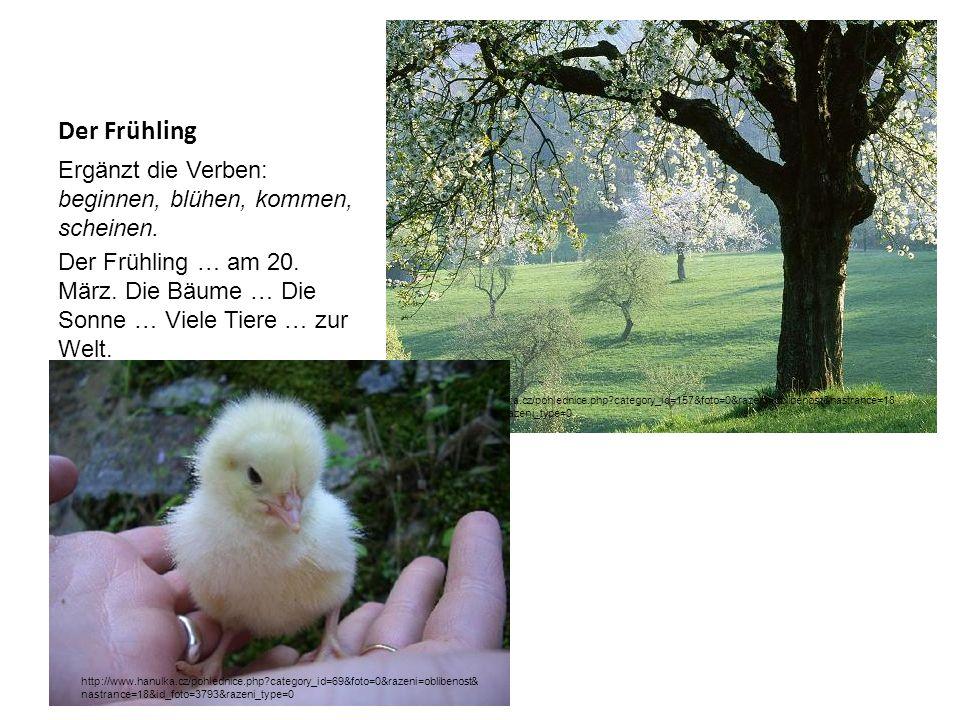 Der Frühling Ergänzt die Verben: beginnen, blühen, kommen, scheinen.