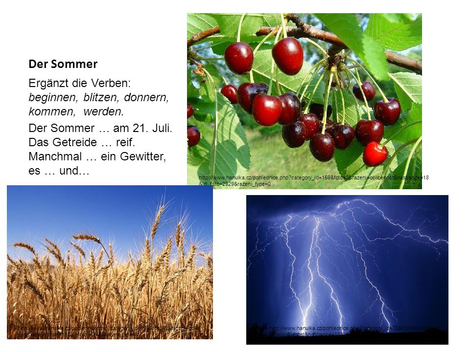 Der Sommer Ergänzt die Verben: beginnen, blitzen, donnern, kommen, werden.