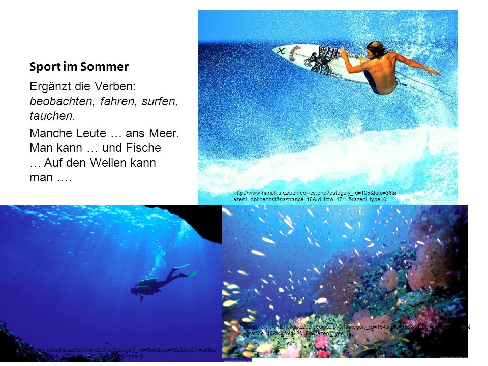 Sport im Sommer Ergänzt die Verben: beobachten, fahren, surfen, tauchen.
