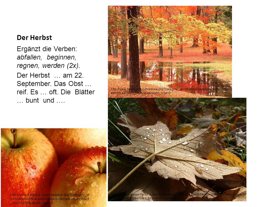 Der Herbst Ergänzt die Verben: abfallen, beginnen, regnen, werden (2x).