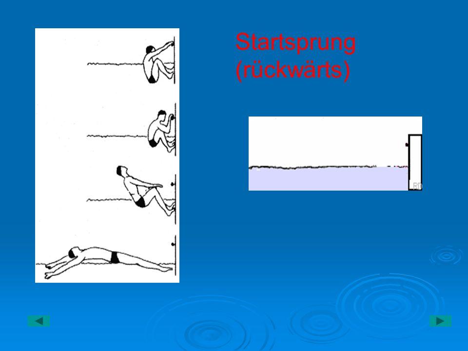 Fein Einphasen Induktionsmotor Vorwärts Rückwärts Anschlussdiagramm ...
