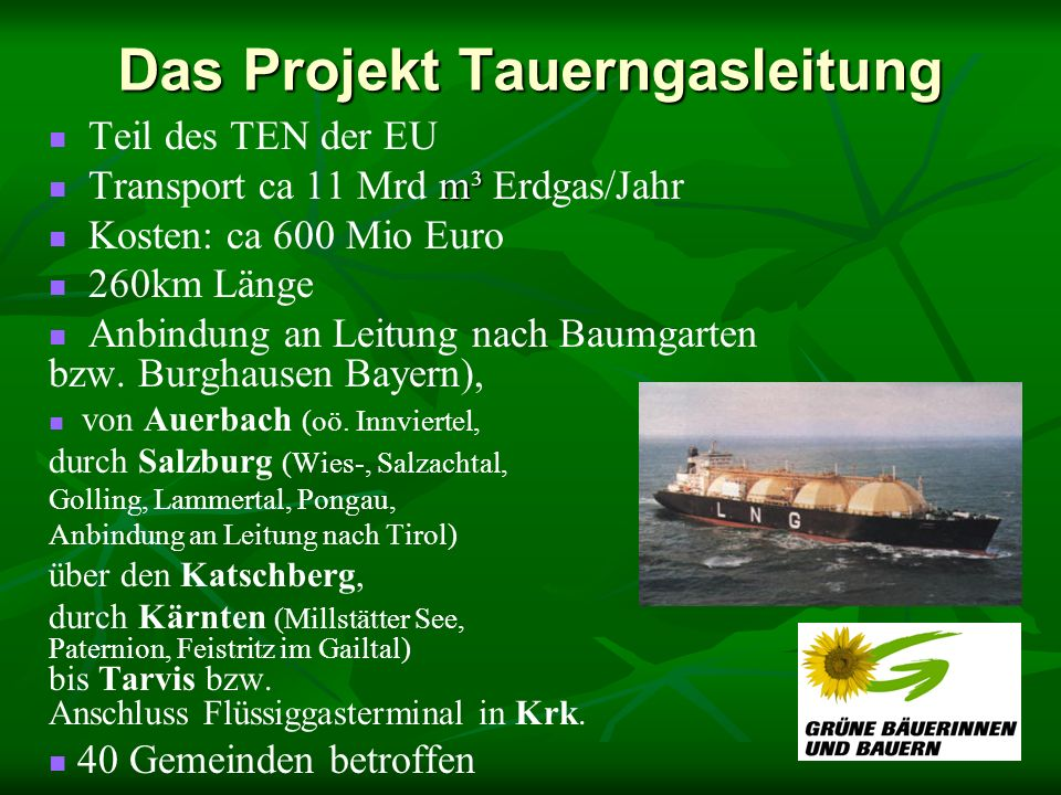 Das Projekt Tauerngasleitung