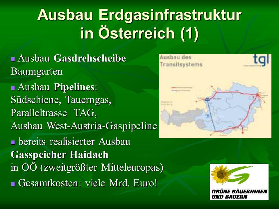 Ausbau Erdgasinfrastruktur in Österreich (1)