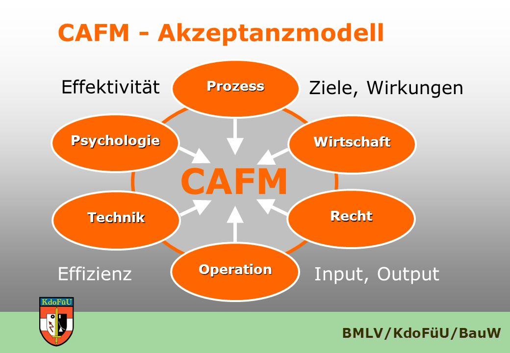 CAFM - Akzeptanzmodell