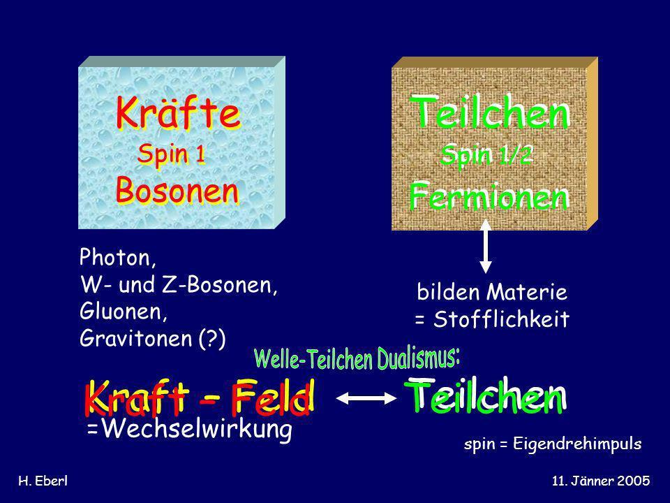Kräfte Teilchen Teilchen Kraft – Feld Bosonen Fermionen Spin 1