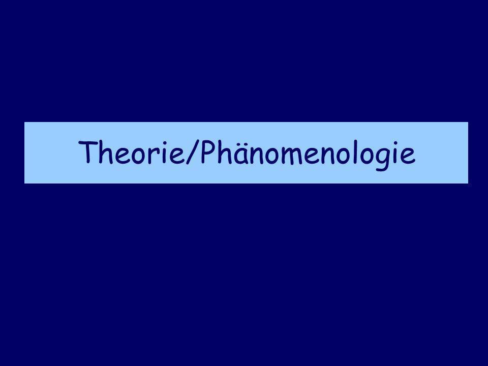 Theorie/Phänomenologie