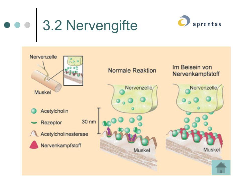 3.2 Nervengifte