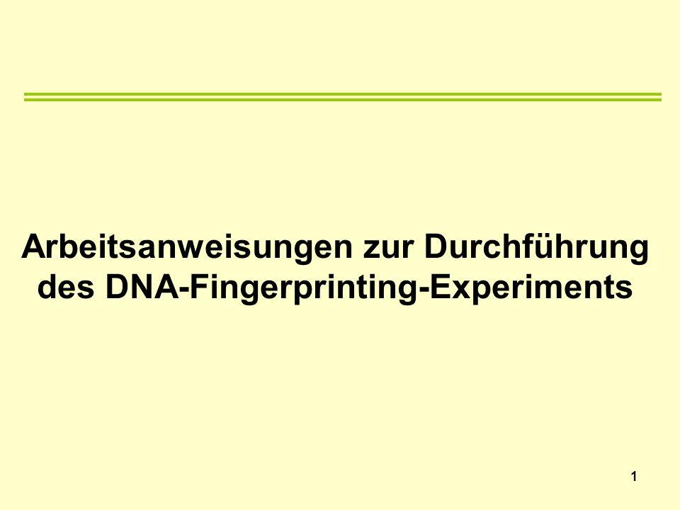 Arbeitsanweisungen zur Durchführung des DNA-Fingerprinting-Experiments