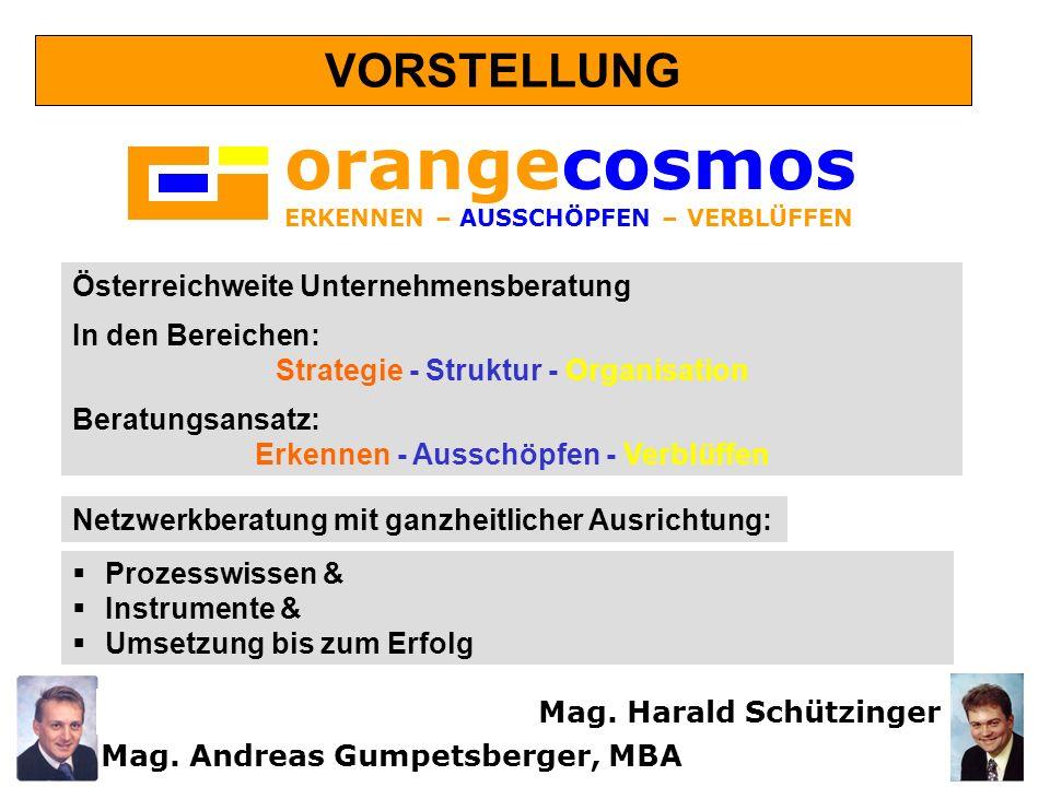orangecosmos VORSTELLUNG Österreichweite Unternehmensberatung