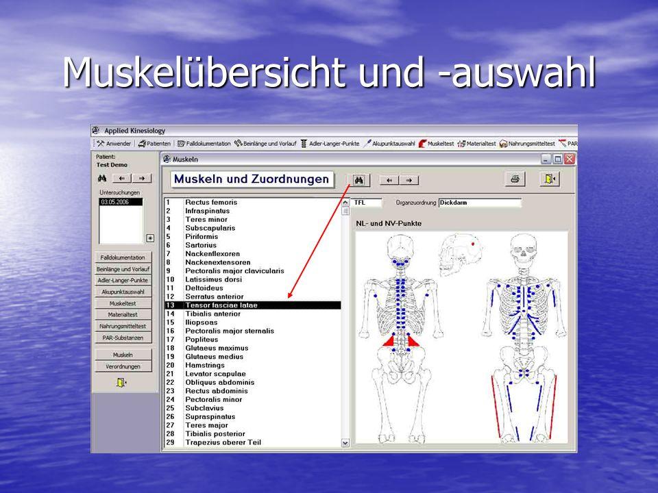 Muskelübersicht und -auswahl