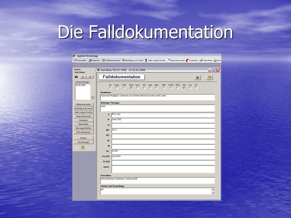 Die Falldokumentation