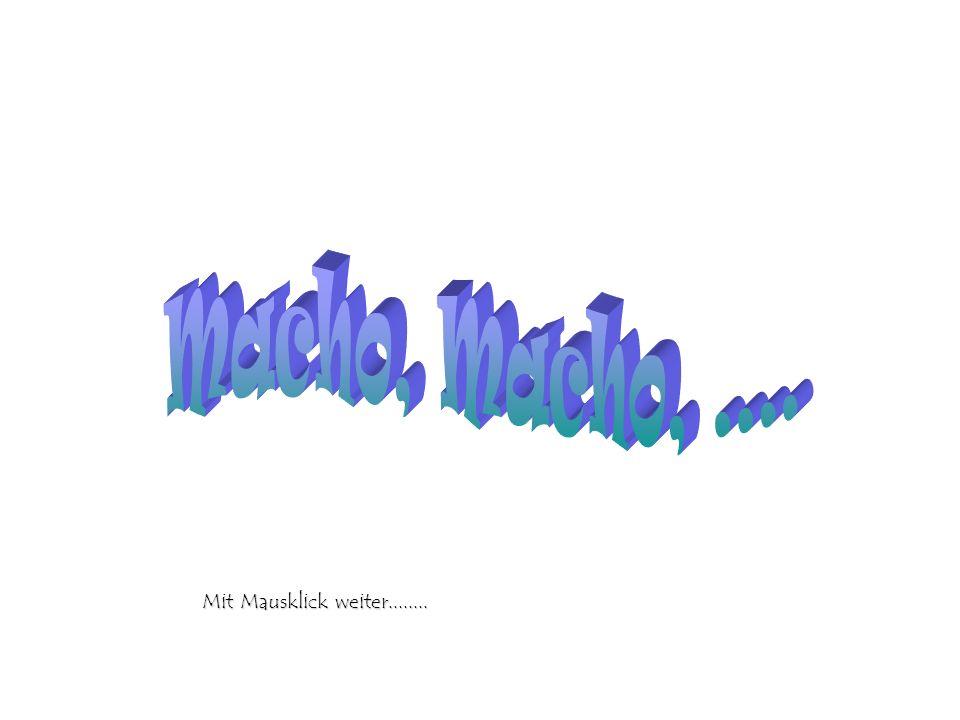 Macho, Macho, .... Mit Mausklick weiter........