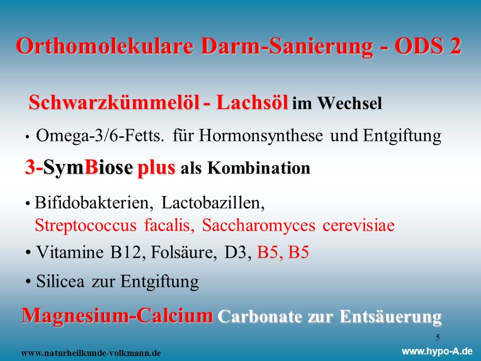 Orthomolekulare Darm-Sanierung - ODS 2