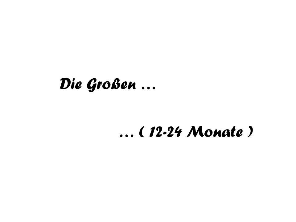 Die Großen … … ( 12-24 Monate )